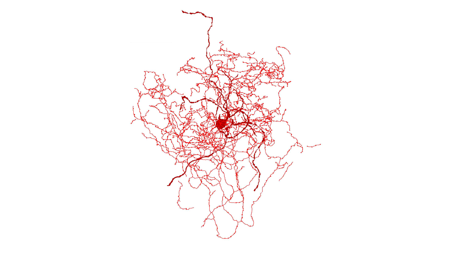 Research Identifies Complex Of Neurons >> Scientists Identify A New Kind Of Human Brain Cell